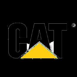 Logo Cat